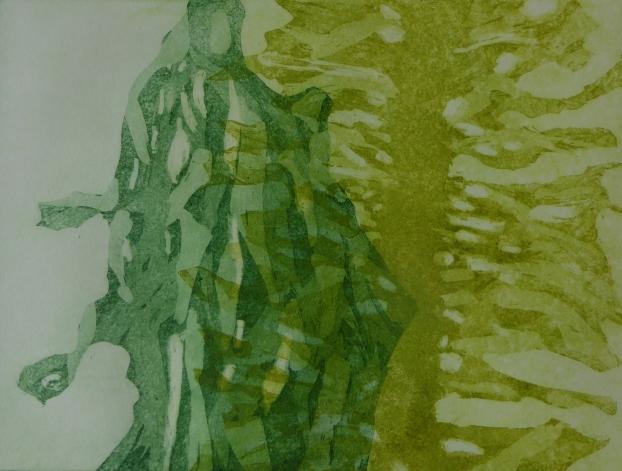 Algen, Aquatinta 2020, 15x20cm